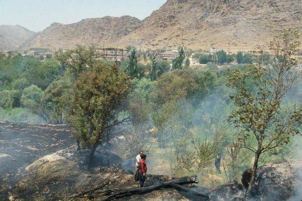 وقوع 8 حریق در باغات و مزارع خرمآباد